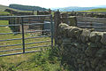 Sheep pen north of Moniaive - geograph.org.uk - 210985.jpg