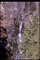 Shenandoah National Park SHEN9190.jpg