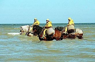 Oostduinkerke - Oostduinkerke is the only place in the world where horseback shrimping is practiced.
