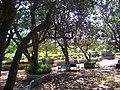 Sitout in the Garden - panoramio.jpg