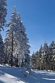 Skiing in Oberhof March 2013-08.jpg