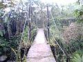 Small suspension bridge.JPG
