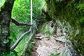Smolarski vodopad 13.JPG