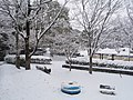 Snow In Takano Park (193235497).jpeg