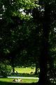 Sonnenbad im Georgengarten.jpg