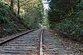 Southern Railway of Vancouver Island, Canada 02.jpg