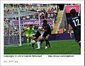 St James' Park Olympic Football (7672628820).jpg