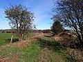 St Oswald's Way on Rake Lane - geograph.org.uk - 1805484.jpg