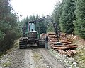 Stacking logs on forest track - geograph.org.uk - 996727.jpg