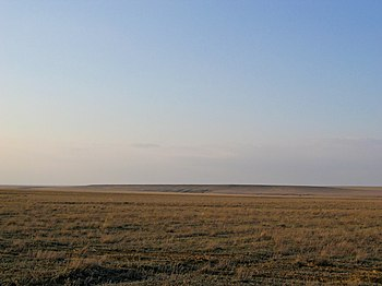 Bildresultat för stepp-tundra