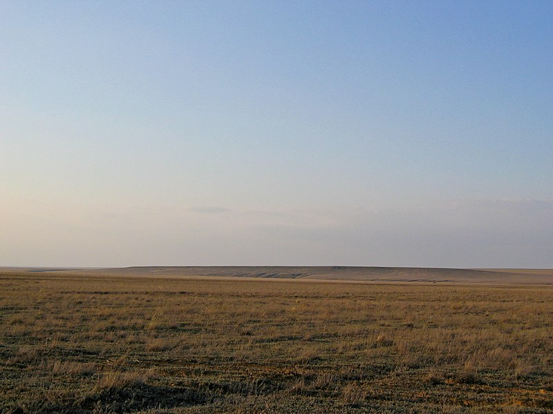 Soubor:Steppe of western Kazakhstan in the early spring.jpg