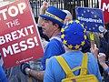 Steve Bray Downing Street SODEM protest 0514.jpg