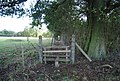 Stile on the path between Nizels Lane and Philpots Lane - geograph.org.uk - 1535913.jpg