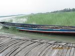 Still boat in Chars of Jamuna river at Bogra 22.jpg