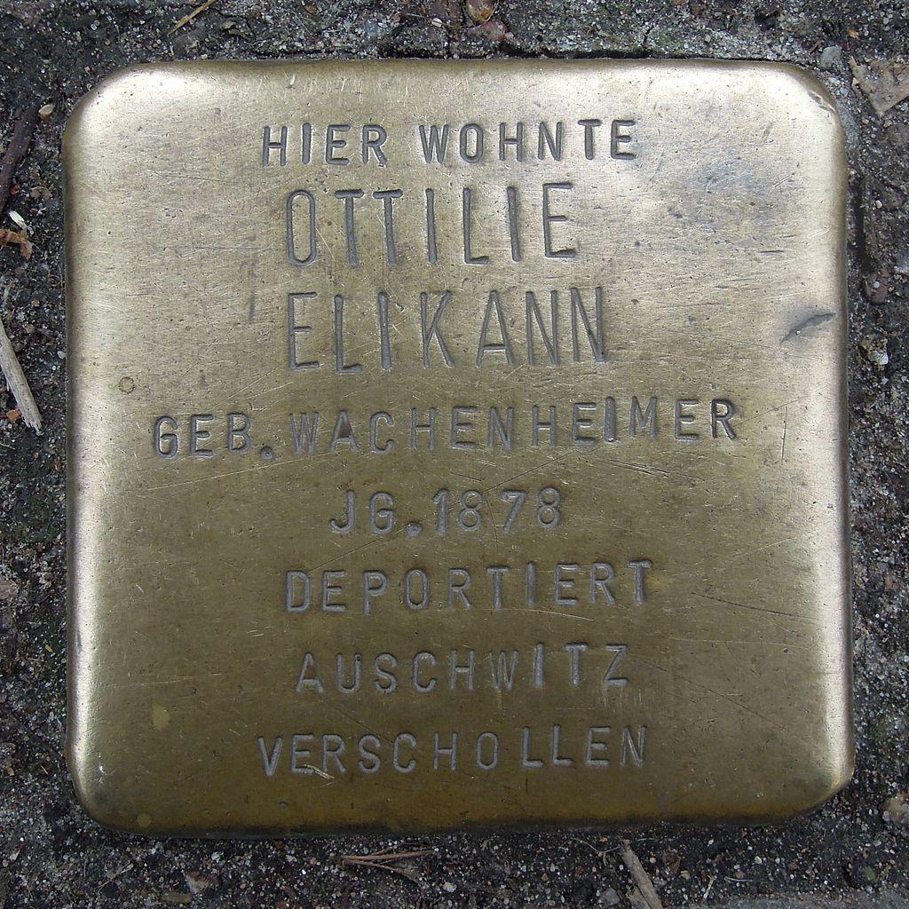 Stolperstein Neustadt an der Weinstraße Fröbelstraße 5 Ottilie Elikann.jpg