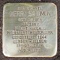 Stolperstein Verden - Merry Salomon (1907).jpg