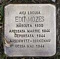 Stolperstein für Edit Mozes.JPG