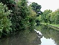 Stratford-upon-Avon Canal near King's Norton, Birmingham - geograph.org.uk - 1726135.jpg
