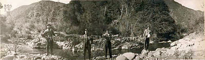 Stringer of Steelhead Trout Upper Sisquoc River 1916.jpg