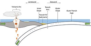 Oceanic trench - Cross section of an oceanic trench formed along an oceanic-oceanic convergent boundary