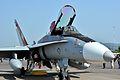 Super Hornet - panoramio.jpg