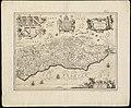 Suthsexia vernacule Sussex (8643505144).jpg