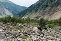 Svaneti Rocks near Chalati Glacier-Uolos prie Chalati ledyno (3872442828).jpg