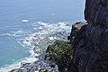 Table Mountain cliifs and coast (33514421738).jpg