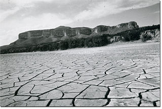 1950s Texas drought