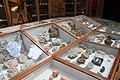 Teylers Museum Haarlem (35929192801).jpg