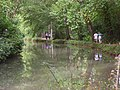 The Basingstoke Canal - geograph.org.uk - 546469.jpg