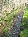 The Brook beside the Old Schoolhouse Church Lane - geograph.org.uk - 1209584.jpg