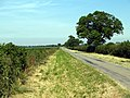 The Horkstow Road - geograph.org.uk - 195567.jpg
