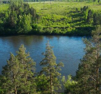 Iya River - The Iya River in the vicinity of Tulun, Irkutsk Region