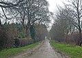 The Muddy Road to Burnham - geograph.org.uk - 1117485.jpg