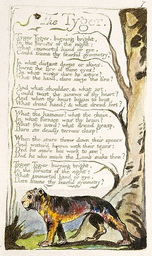 The Tyger - Copy A of Blake's original printing of The Tyger, c. 1795. Copy A is currently held by the British Museum