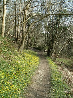 The footpath below Allt Lan-las - geograph.org.uk - 751571