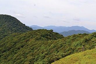 Cagayan Valley - Image: The forested edge of the Mt. Cagua volcanic crater Zoo Keys 266 001 g 009