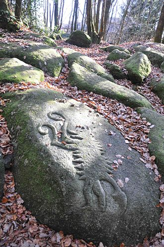 Monts de Gueret Animal Park - Image of a wolf in ancient Celtic style