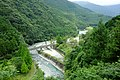 Tirol Forest201908-03.jpg