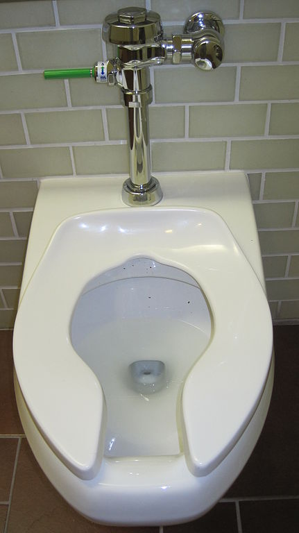Image Result For Can You Toilet
