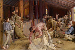 Oil painting depicting sheep shearers plying their trade in a timber shearing shed.
