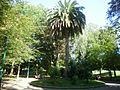 Torrelavega - Parque Manuel Barquin 1.JPG