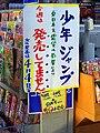 Touhoku-Tsunami Shock 2011 (53).jpg