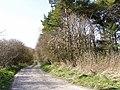 Track Down to Argham - geograph.org.uk - 1215447.jpg