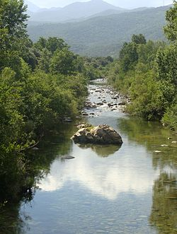 Travo-fleuve-68.JPG