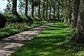 Tree lined road, Ashleworth - geograph.org.uk - 931614.jpg