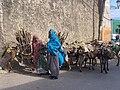 Two Women Leading their Donkeys to Harar.jpg