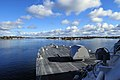 US Navy 081119-N-5758H-018 USS Freedom (LCS 1) sails up stream in the Saint Lawrence River.jpg