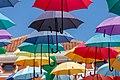 Umbrellas in Novigrad, Istria County, Croatia.jpg